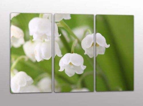 quadri moderni fiori bianchi