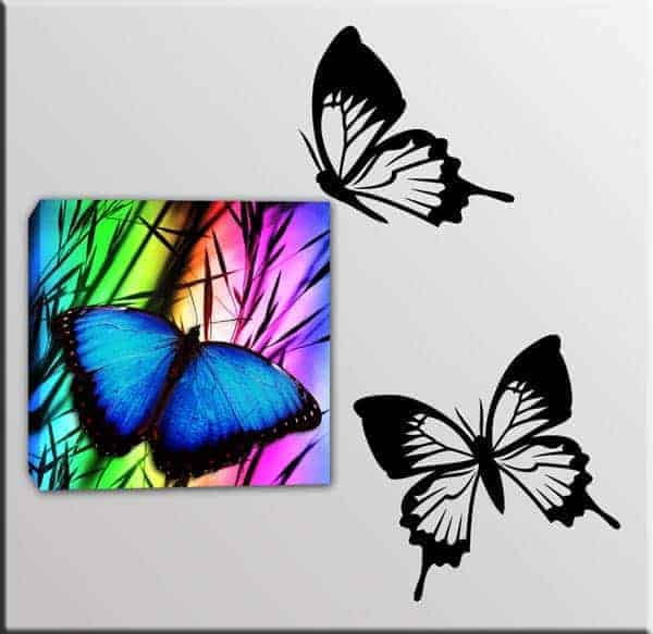 quadro con wall stickers farfalle