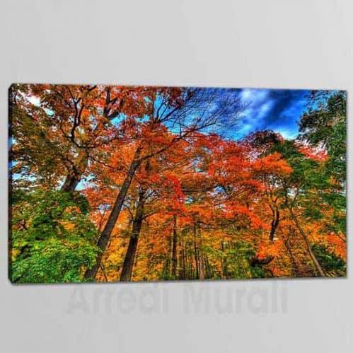 quadri moderni natura bosco 1 tela