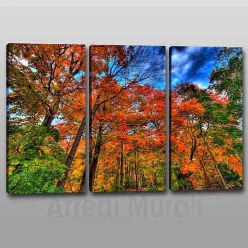 Quadri moderni natura bosco su 3 tele