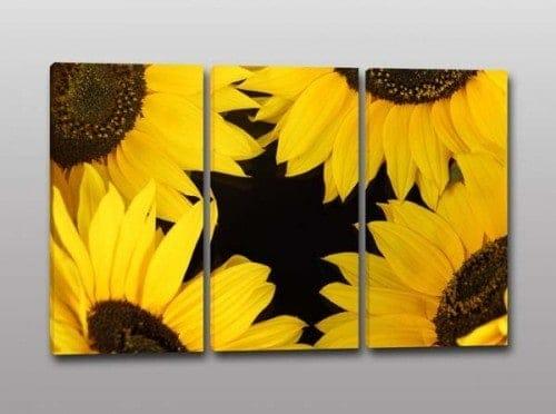 quadri moderni girasoli fiori