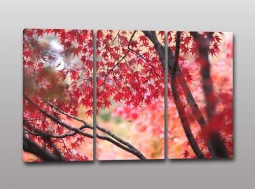 quadri moderni natura alberi