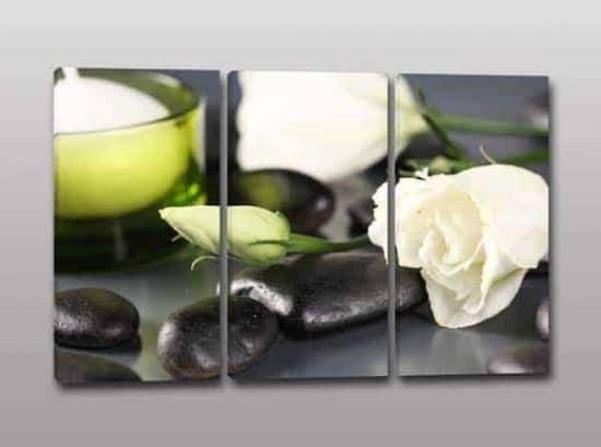 quadri rosa bianca benessere