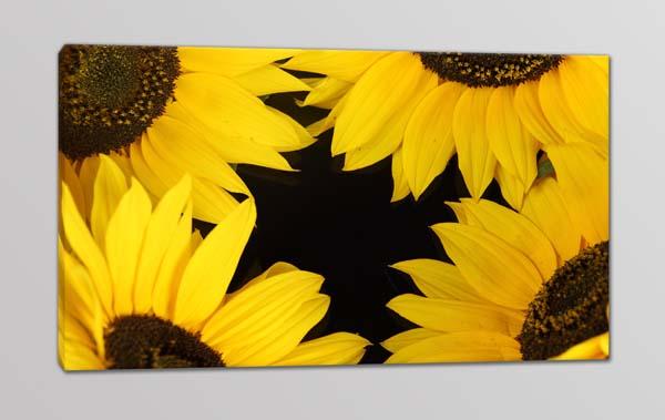 quadro moderno girasoli fiori