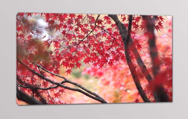 quadro moderno natura alberi