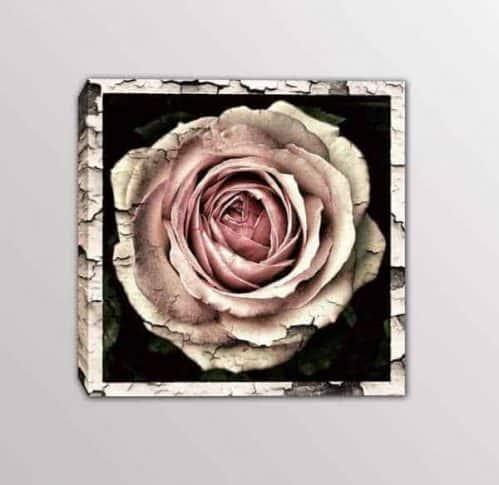 quadro moderno rosa vintage