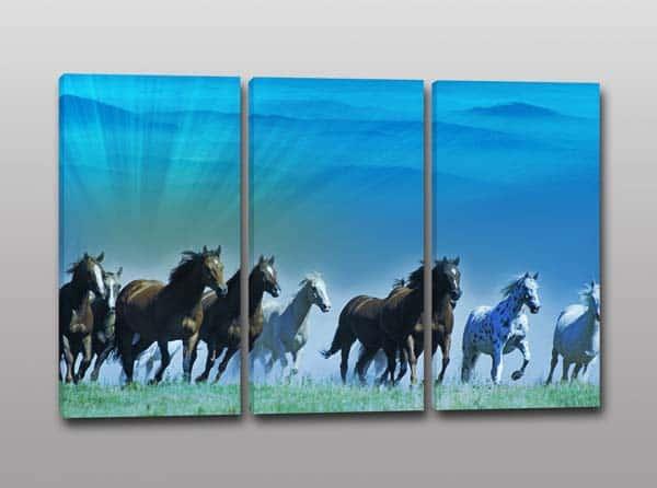 tris quadri moderni cavalli