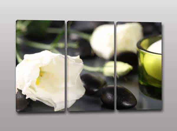 quadri moderni fiori benessere