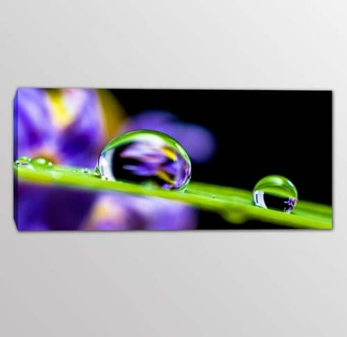quadro moderno stampa tela digitale