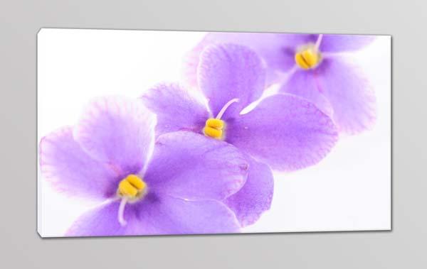 quadro moderno stampa tela fiori