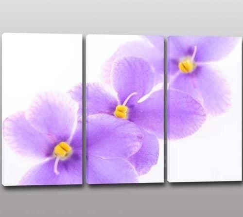 tris quadri moderni stampa fiori