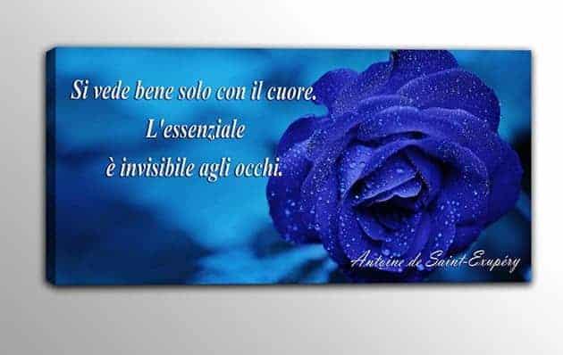 quadro moderno rosa blu frase