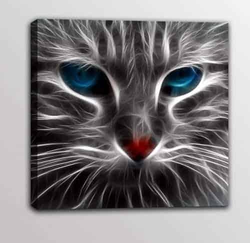 quadro moderno stampa tela gatto