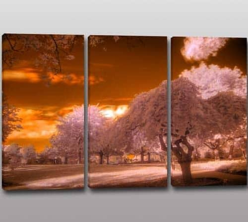Quadri moderni stampa paesaggio alberi