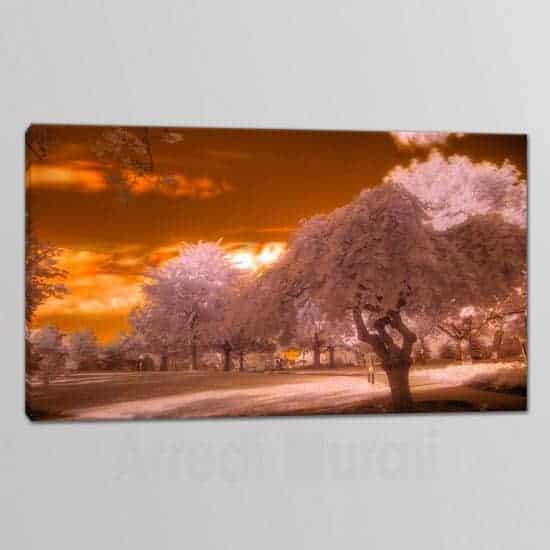 tela con stampa paesaggio alberi