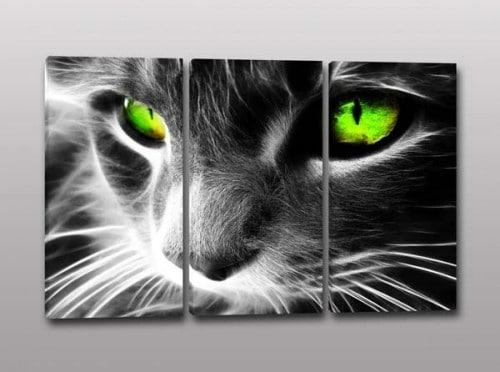 Tris quadri moderni occhi gatto