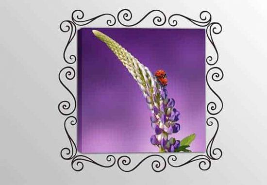 quadro moderno fiore adesivi murali cornice