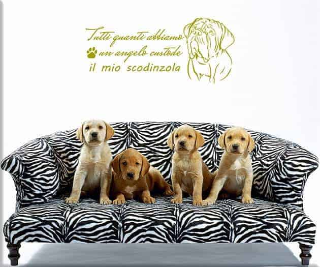 wall stickers frase cane