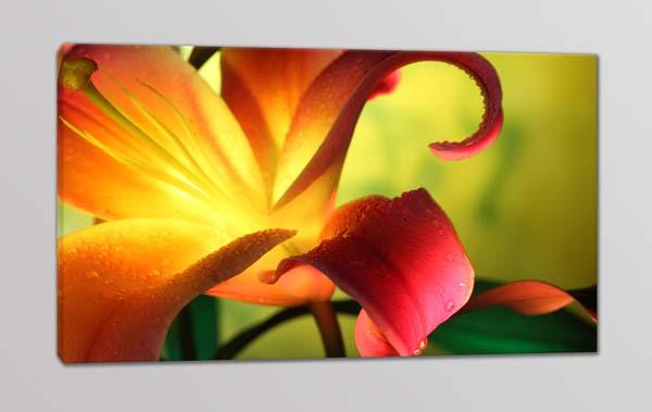 quadro moderno stampa tela fiore