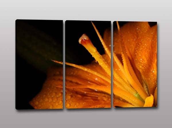 tris-quadri-moderni-fiore-stampa-tela