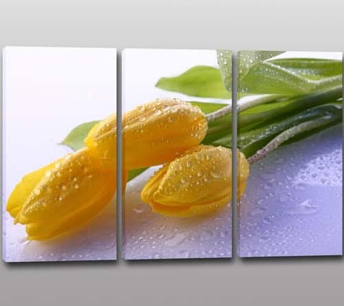 tris quadri moderni stampa fiori tulipani