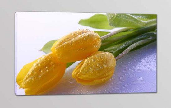 quadro moderno stampa fiori tulipani