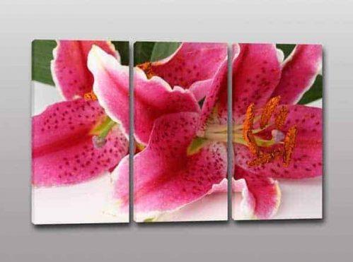 quadri moderni stampa fiori arredo