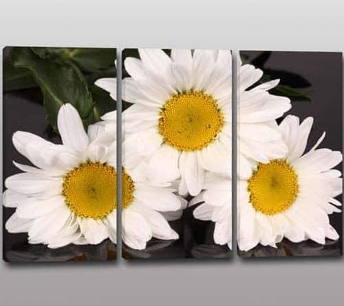 quadri tris tulipano : Quadri moderni fiori, per arredare con eleganzaArredi Murali