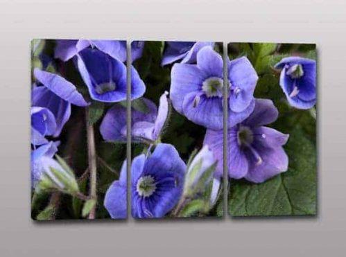 Quadri moderni arredo stampa fiori
