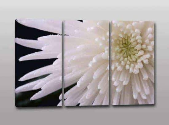 Quadri moderni fiore stampa tela arredo