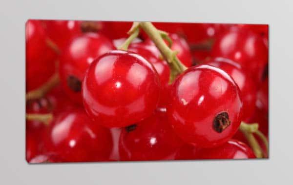quadro moderno frutta ribes bar cucina