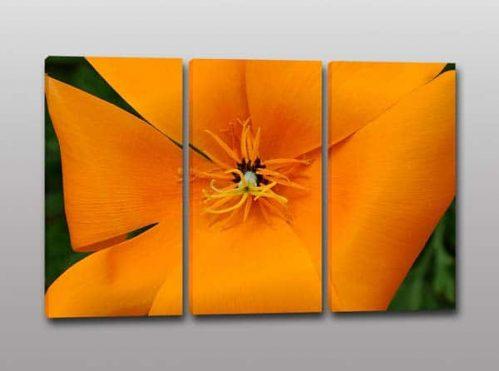 Quadri moderni fiore stampa digitale tela