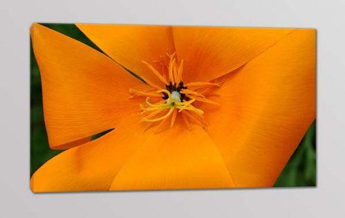 Quadro moderno fiore stampa digitale tela