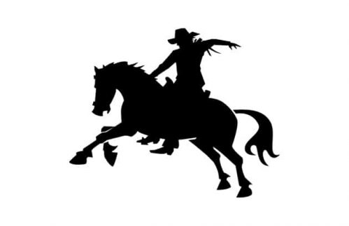 Lavagne adesive murali cowboy bambini