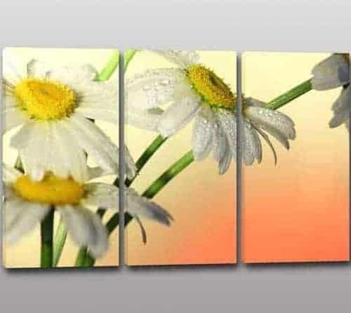 Quadri moderni fiori, per arredare con eleganza Arredi Murali 