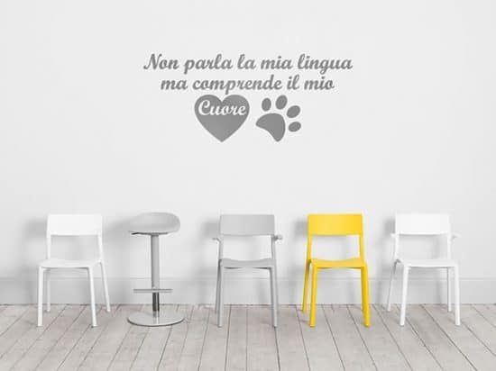wall stickers frase cane decorazioni arredo