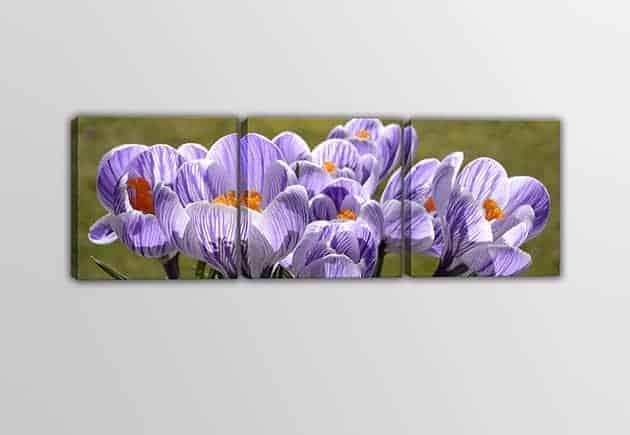 Tris quadri moderni fiori stampe su tela