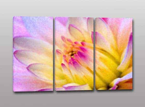 Quadri moderni stampa digitale su tela fiore arredo