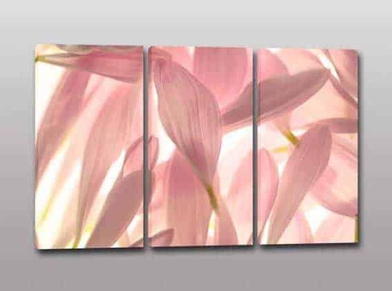 Quadri moderni stampa su tela petali fiori arredo