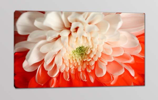 Quadro moderno stampa su tela fiore arredo