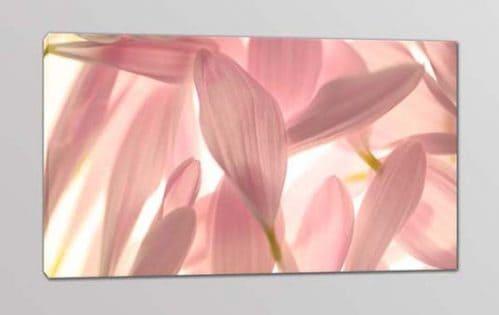 Quadro moderno stampa su tela petali fiori arredo