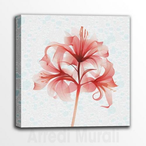 Quadretti con fiore sfumature celesti