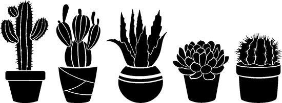 Adesivi murali 5 piante grasse