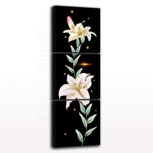 Quadri con fiori e stampe su tela