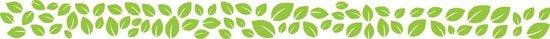 foglie adesive di colore verde lime