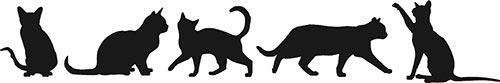 Adesivi murali 5 gatti in offerta