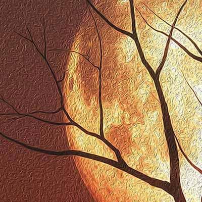 dettaglio tele canvas con paesaggio al tramonto