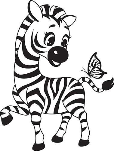 piccola zebra