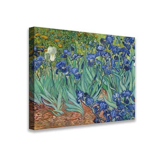 Quadro Iris di Van Gogh riproduzione