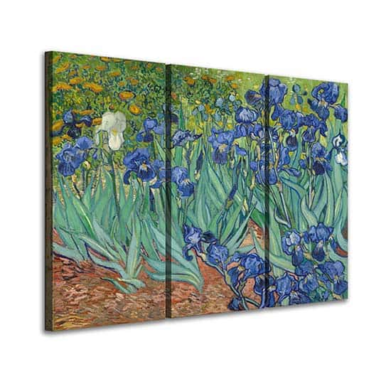 Quadri Iris di Van Gogh